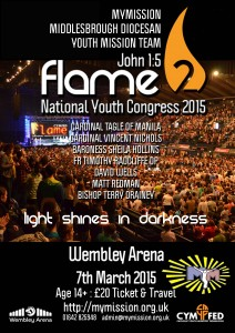 flame2 poster