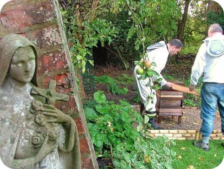 photo taken in garden of Carmelite Friary in York