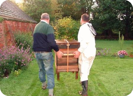 photo of hive being installed at York Carmelite Friary