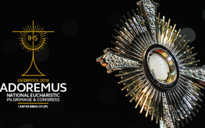 Adoremus – Bishop Robert Barron's talks now available