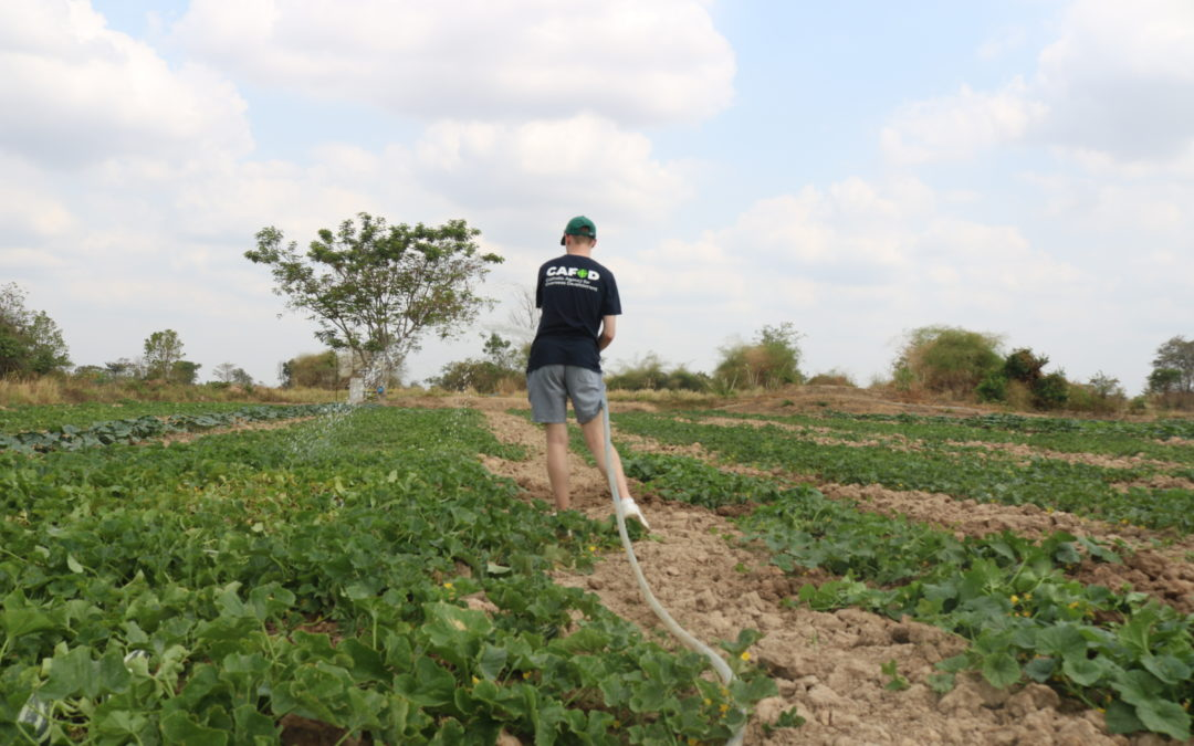 Step Into The Gap With CAFOD