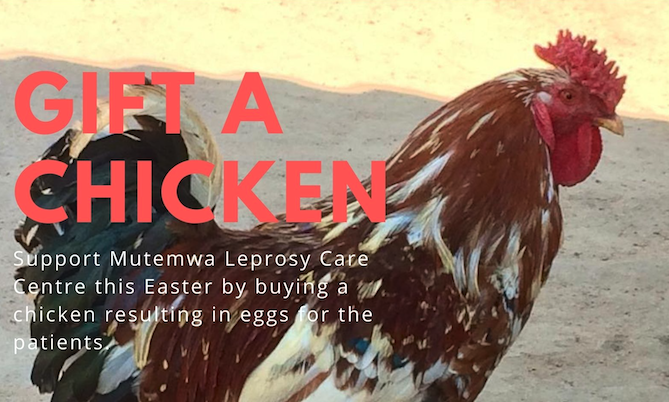 Why A Chicken For A Leprosy Care Centre Is The Perfect Easter Gift
